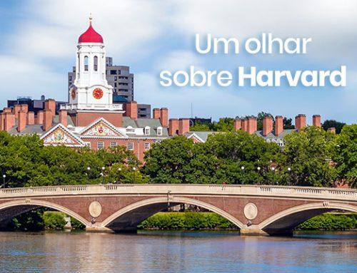Um olhar sobre Harvard